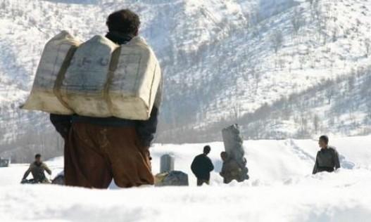 در نتیجه سرمای کولاک شدیدی که از شب گذشته در منطقه سردشت استان آذربایجان غربی ایجاد شده بود یک کولبر 17 ساله جان خود را از دست داد. براساس اطلاعاتی که در همین رابطه توسط رسانههای محلی منتشر شده است این کولبر جان باخته کامران رشکه نامداشته است.