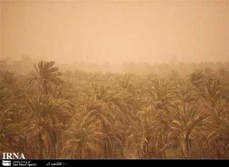 به نوشته خبرگزاری دولتی مهر در تاریخ روز سه شنبه ۱۷ اسفند ۱٣۹۵آمده است : یک مقام مسئول با بیان اینکه بحث ریزگردها به کشاورزی خوزستان خسارت زیادی وارد کرده است،گفت: بیشترین خسارت مربوط به زیربخش زراعت است.